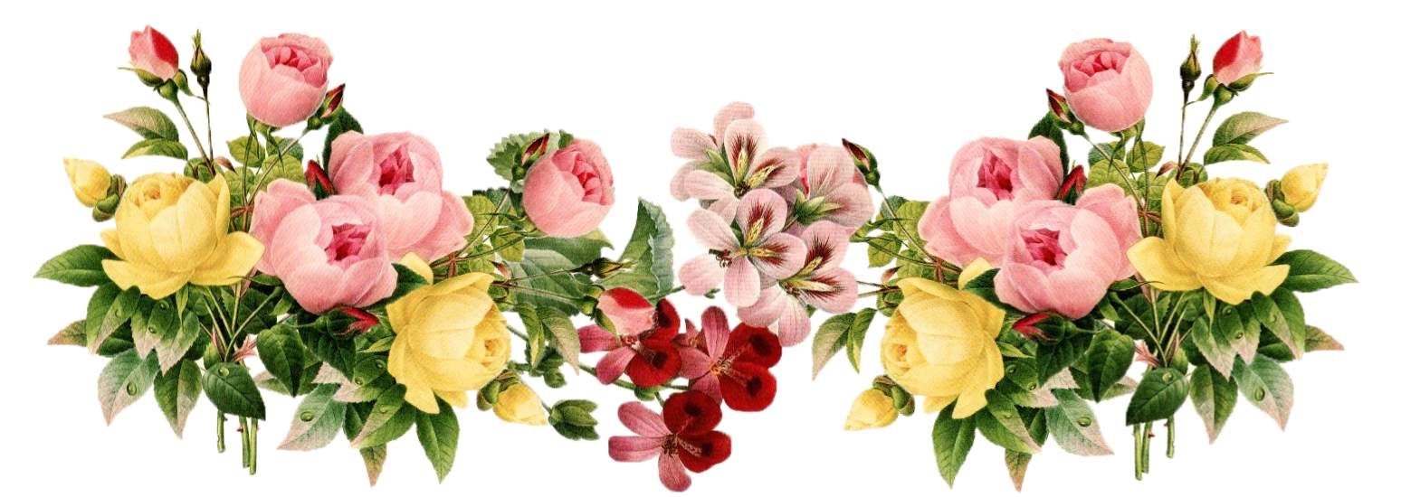 7-2-flowers-png-3.png